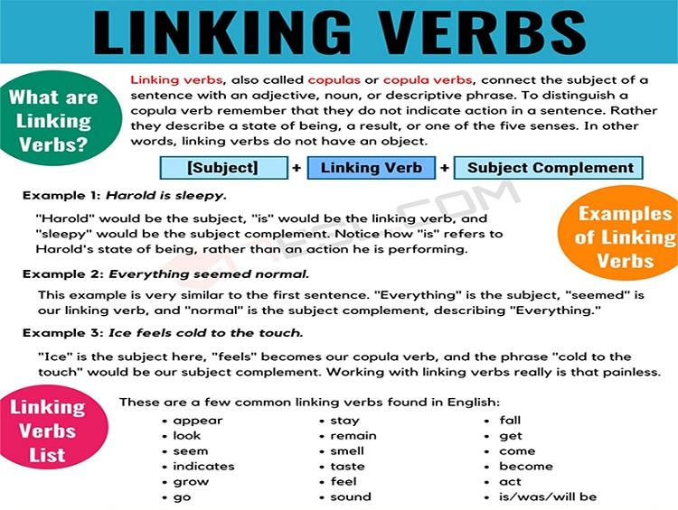 Linking Verbs là gì