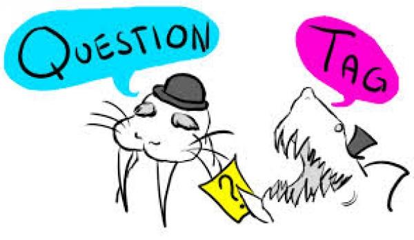 Câu hỏi đuôi (tag question) trong tiếng anh