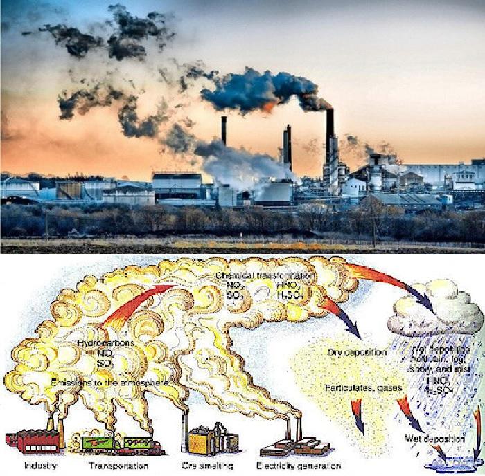 Nguyên nhân dẫn đến ôn nhiễm môi trường