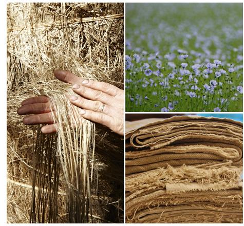 phương pháp sản xuất vải lanh
