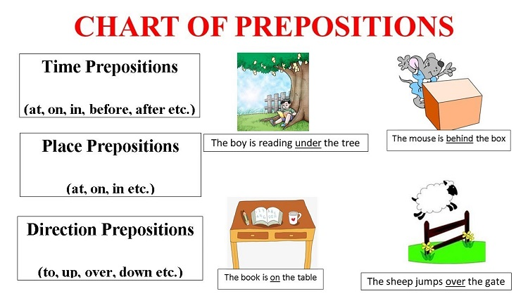 Phân biệt về 8 từ loại trong tiếng Anh