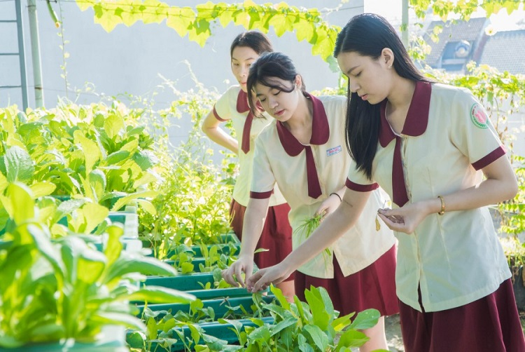 Trường trung học nội trú Hoa Sen
