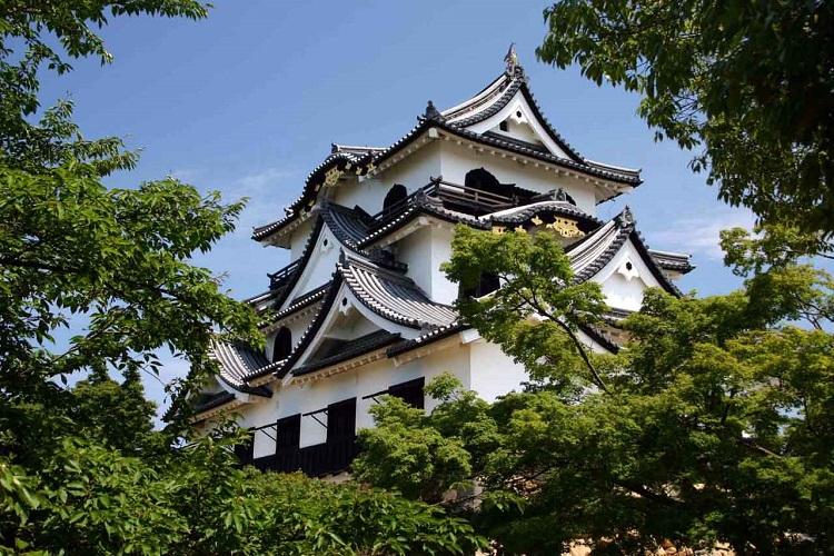 Lâu đài Hikone - lâu đài đẹp nhất ở Nhật Bản