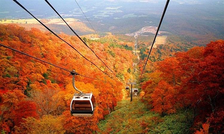 Những địa điểm nổi tiếng ở Tokyo - Núi Takao